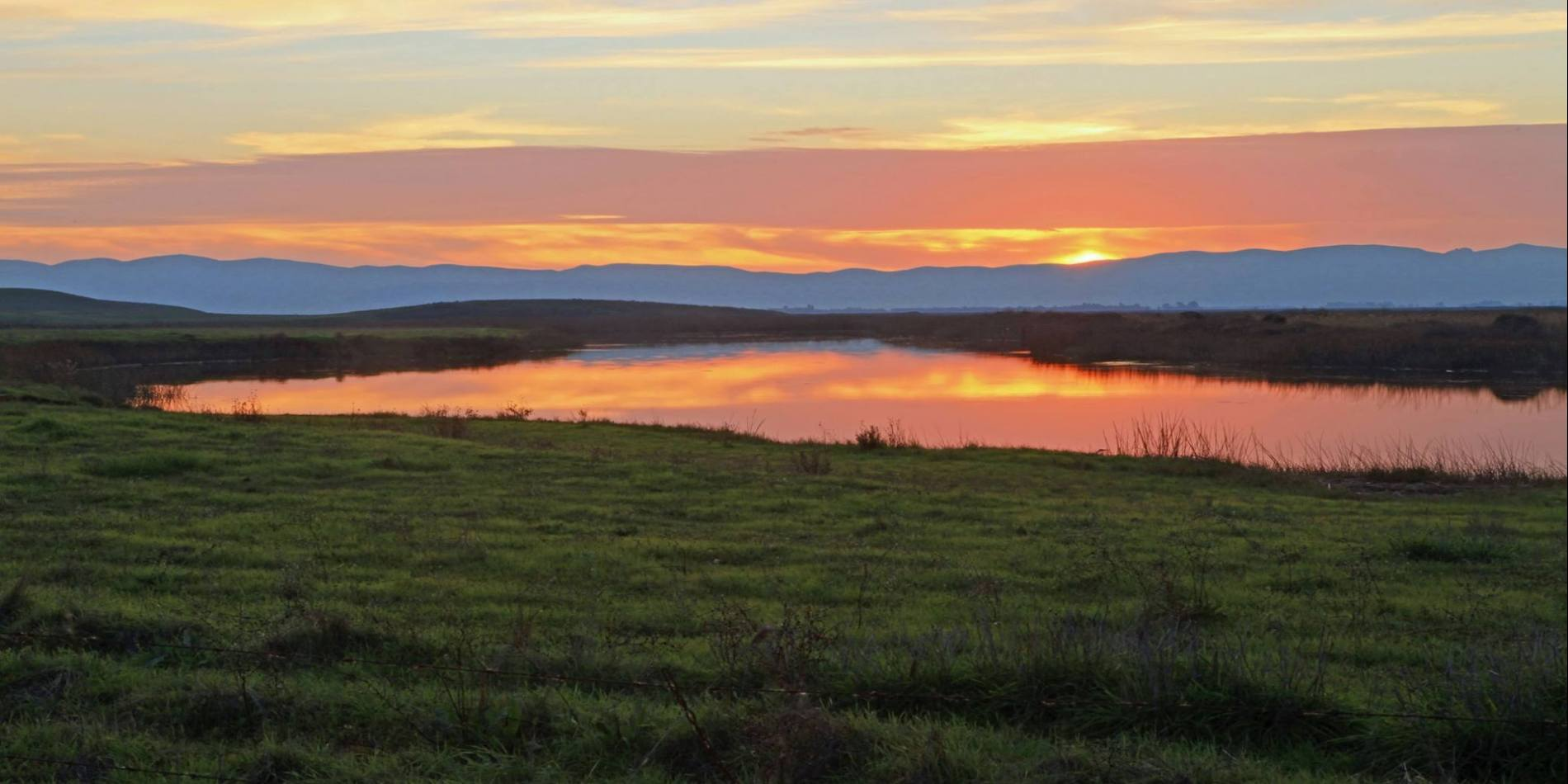 Rising out of the northeast edge of the Suisun Marsh, Rush Ranch stretches across 2,070 acres of marsh and rolling grassland.