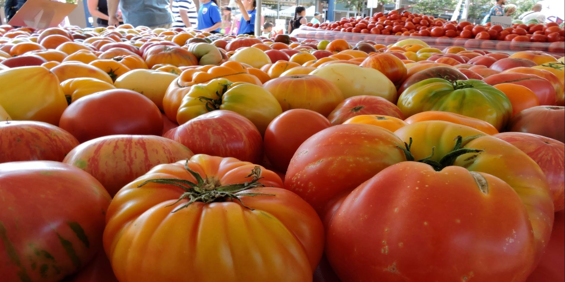 The Fairfield Tomato Festival has been a beloved community event for over 25 years