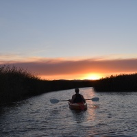 A peaceful sunset kayak on the Suisun Marsh with Grizzly Waters Kayaking