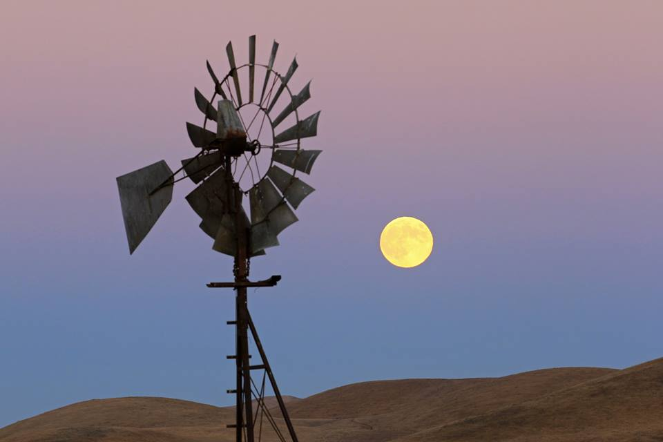 Full Harvest Moon at Rush Ranch captured by Tom Muehleisen