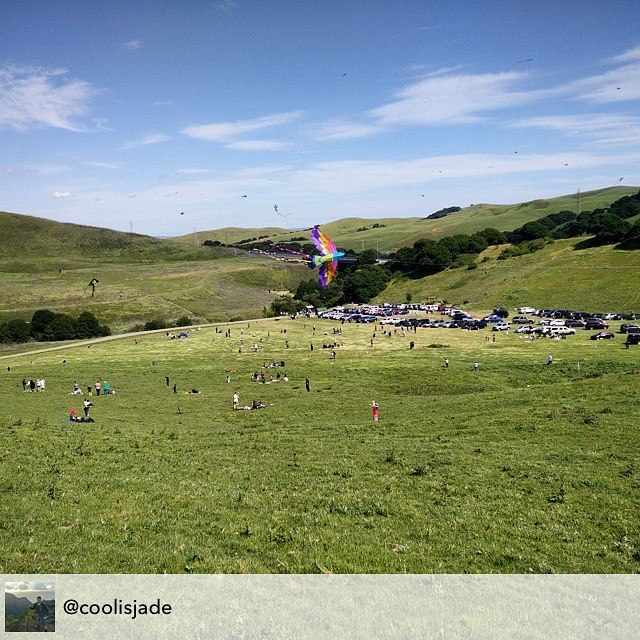 Kites fly high in the air during the Lynch Canyon kite festival in this photo by Instagram user @coolisjade