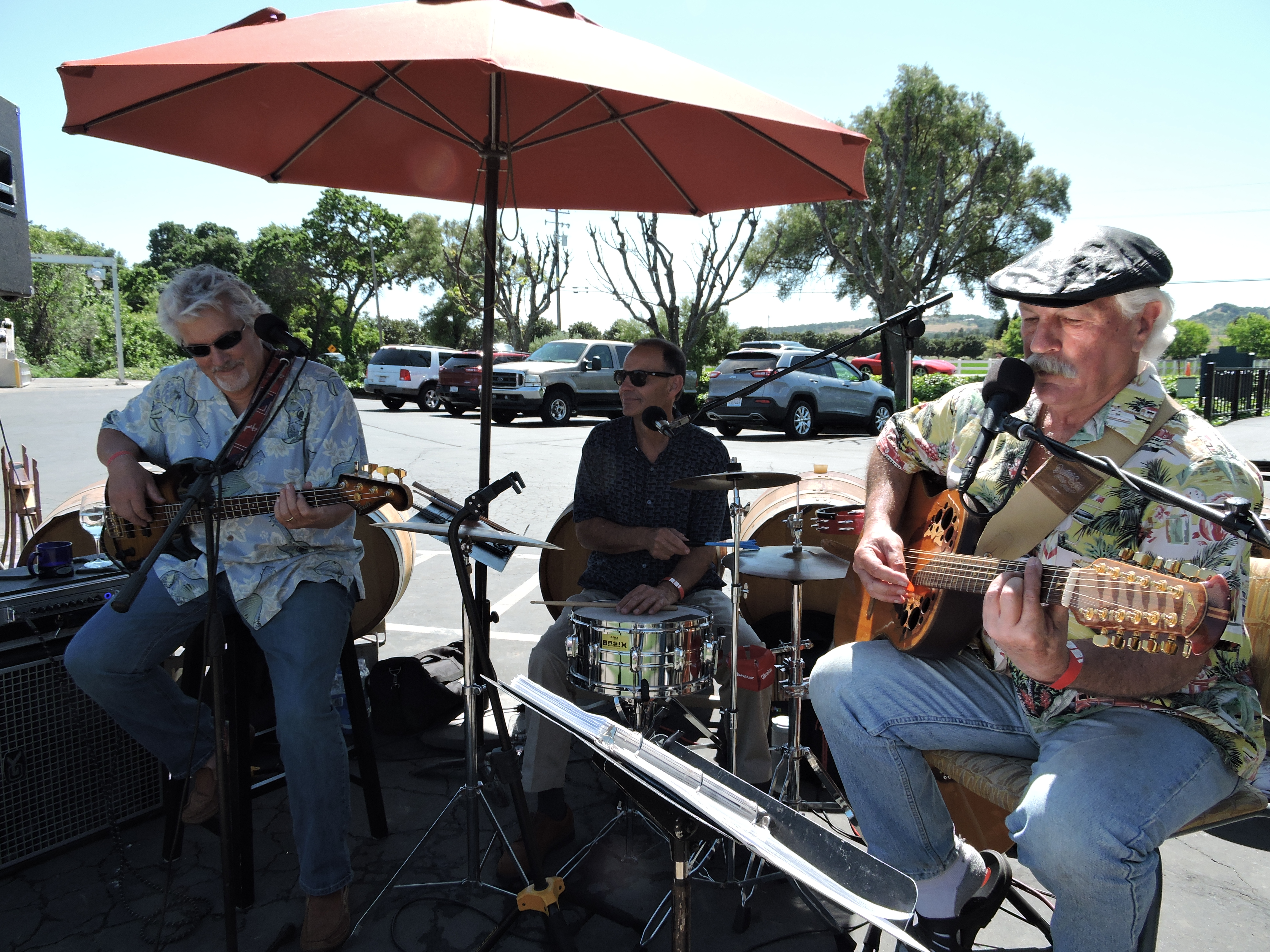Local bands kept the crowds dancing and singing along at all the locations. This group performed all afternoon at Wooden Valley Winery.